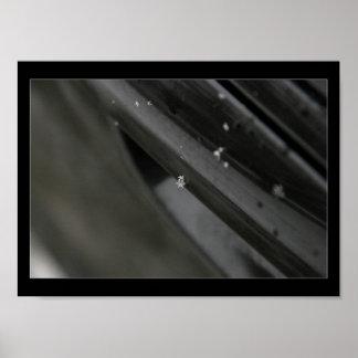 snowflake print - black and white