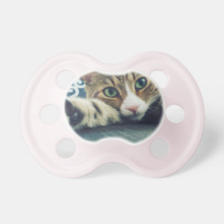 Snowflake Tabby Cat Holiday Card Baby Pacifiers