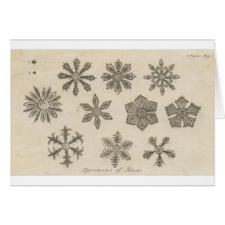 Snowflakes - 1791 card