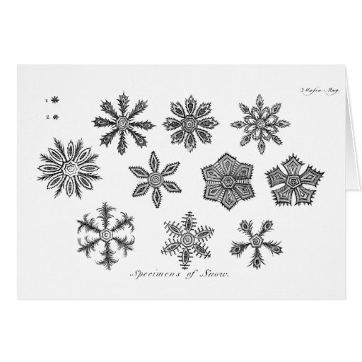 Snowflakes -- 1791 greeting cards