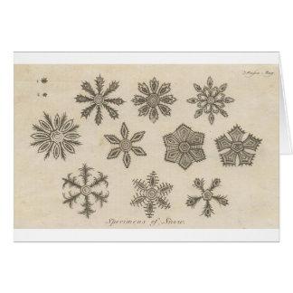 Snowflakes - 1791 greeting card