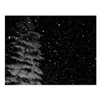 snowflakes at night unique photograph postcards