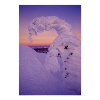 Snowghost in the Whitefish Range at Twilight Poster