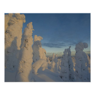Snowghosts at sunset at Whitefish Mountain 2 Poster
