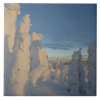 Snowghosts at sunset at Whitefish Mountain 2 Tile