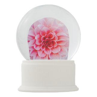 snowglobe pink snow globes