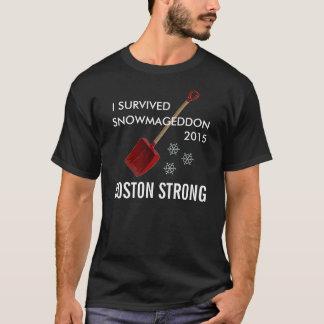 Snowmageddon Boston T-Shirt