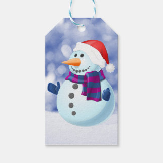 Snowman Winter Merry Christmas Snow Gift Tags