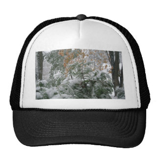 Snowstorm 1 cap