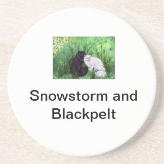 Snowstorm and Blackpelt Coaster