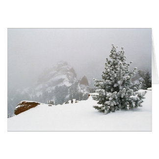 Snowstorm at the Crags Cards