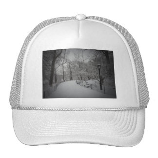 Snowstorm, Central Park, New York City Trucker Hat