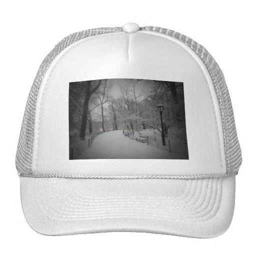 Snowstorm, Central Park, New York City Trucker Hat