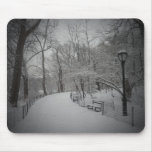 Snowstorm, Central Park, New York City Mouse Pad