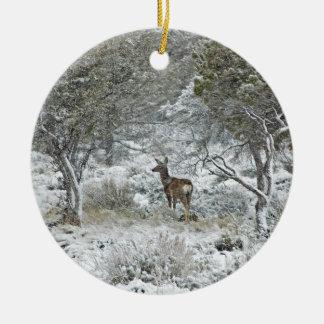 Snowstorm Christmas Ornament