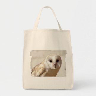 Snowy Barn Owl  Canvas Bag