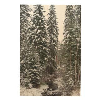 Snowy Beauty of the Black Hills Wood Print