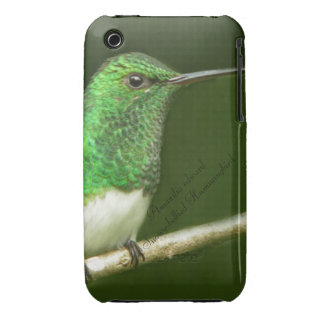 Snowy-bellied Hummingbird iPhone 3 Case-Mate Cases