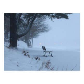 Snowy Bench Postcard
