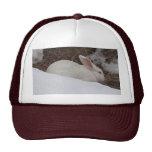 Snowy Bunny Hats