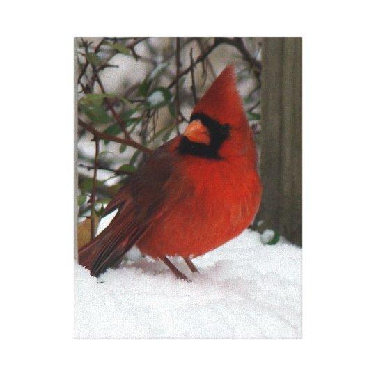 Snowy Cardinal Canvas Print