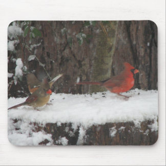 Snowy Cardinals and Towhee Mouse Mat
