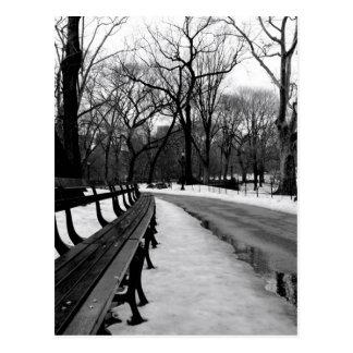 Snowy Central Park Postcard