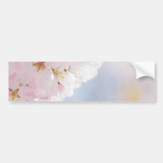 Snowy Cherry Blossoms Bumper Sticker
