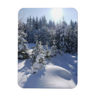Snowy cold winter landscape 2 magnet