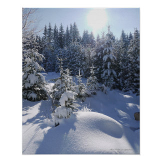 Snowy cold winter landscape 2 poster