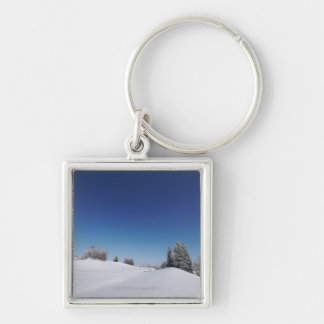 Snowy cold winter landscape 3 key ring