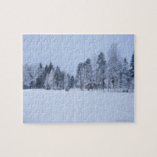 Snowy cold winter landscape 8 jigsaw puzzle