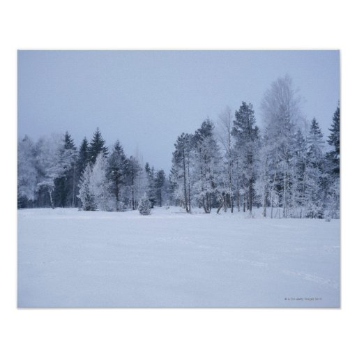 Snowy cold winter landscape 8 poster