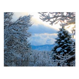 Snowy Colorado Postcards