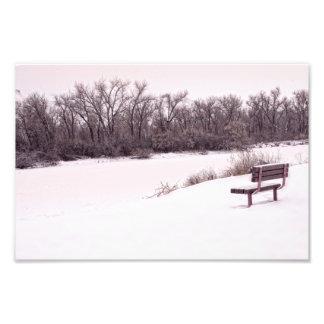 Snowy days photo print
