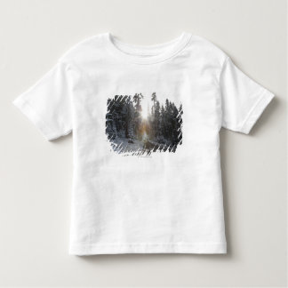 Snowy dirt road going into the sun toddler T-Shirt