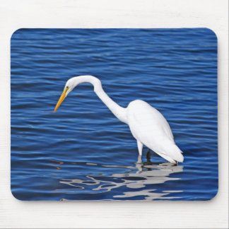 Snowy Egret Mouse Pad