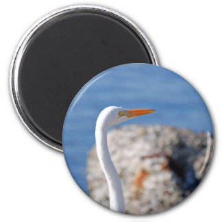 Snowy Egret Refrigerator Magnet