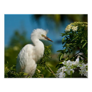 Snowy Egret with Flowers Print or Poster