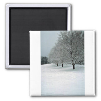 Snowy field lined with trees, New England Square Magnet