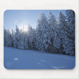 snowy forest in the mountain mouse mat