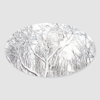 Snowy Forest Oval Sticker
