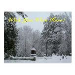 Snowy Graveyard Postcards