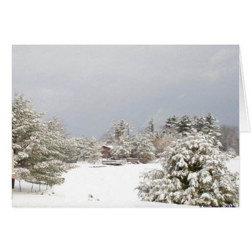 snowy lake winter scene notecard card
