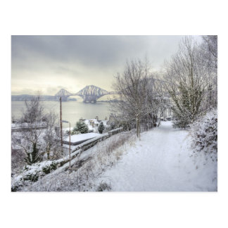 Snowy Lane Postcard