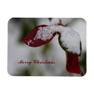Snowy leaves christmas rectangle magnet