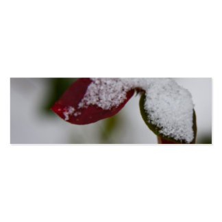 Snowy leaves pack of skinny business cards