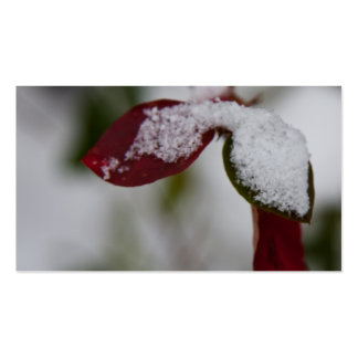 Snowy leaves pack of standard business cards