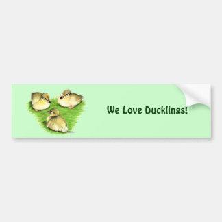 Snowy Mallard Ducklings Car Bumper Sticker