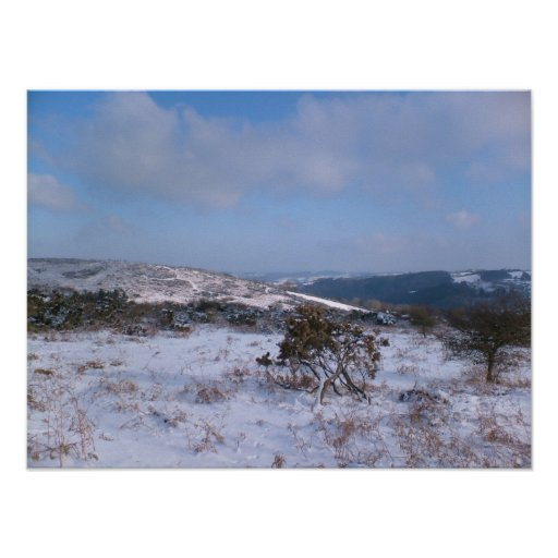 Snowy Moorland Poster